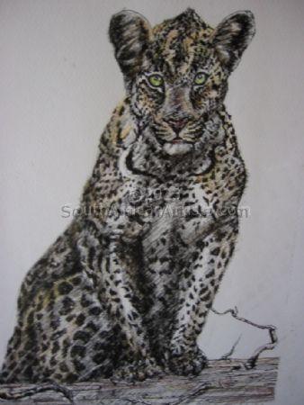 Tinted leopard II