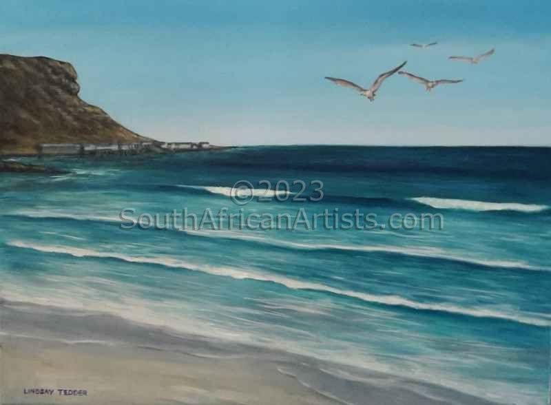 Seagulls Flying Elands Bay