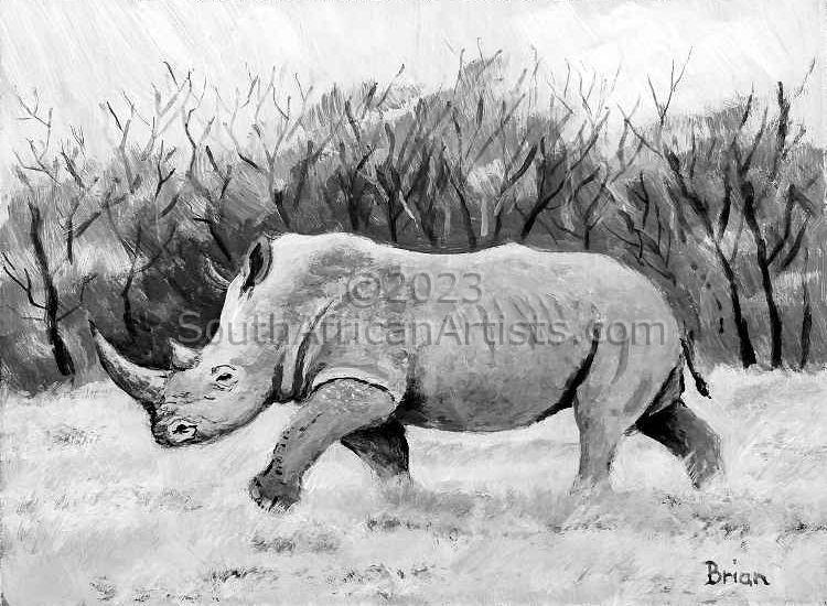 Monochrome Rhino