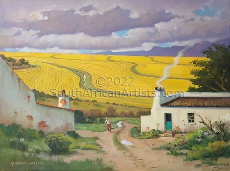 Golden Wheat Fields of the Swartland