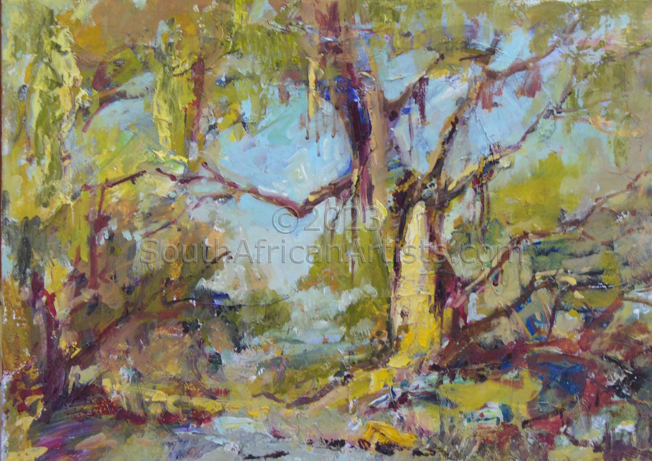 Eucolyptus Tree