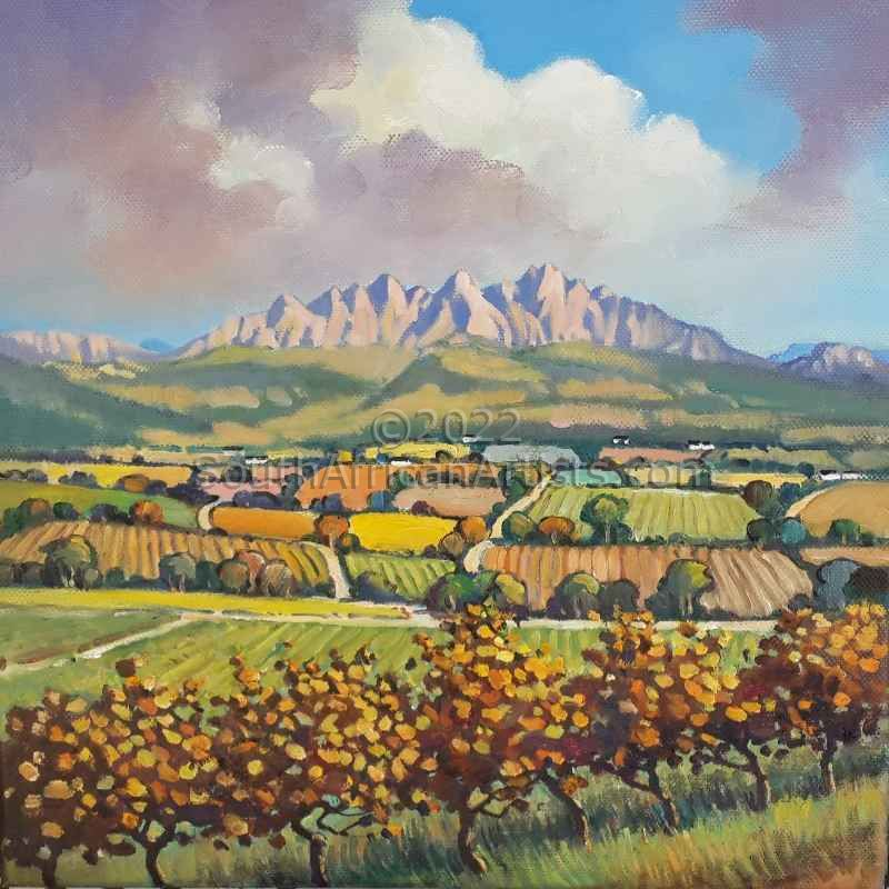 Vineyards Wellington
