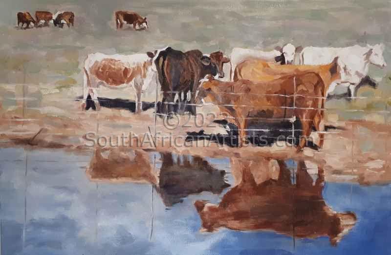 Happy Karoo Cows
