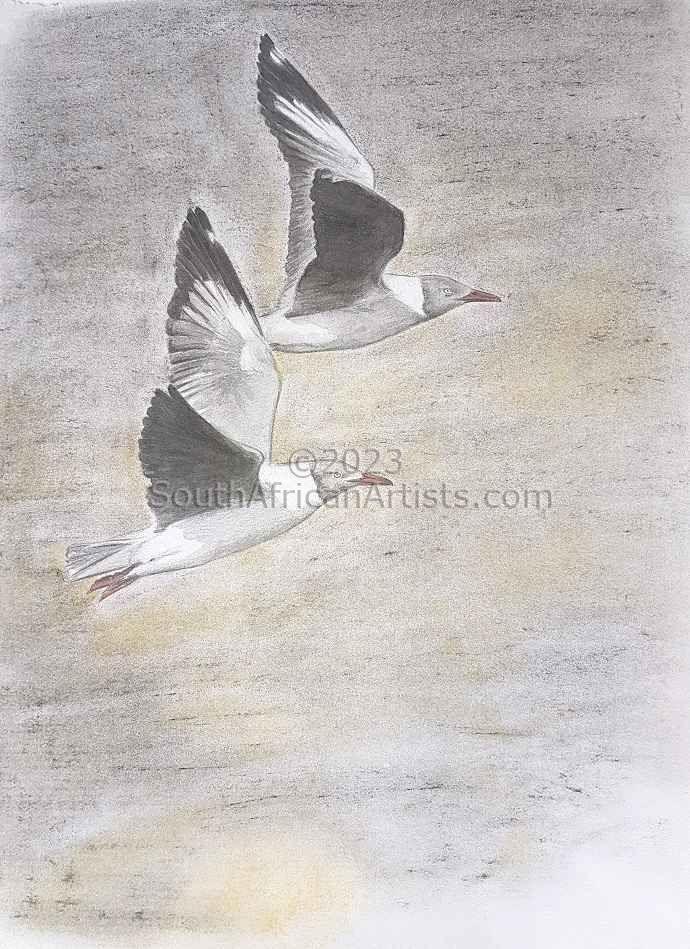 Pastel Gulls