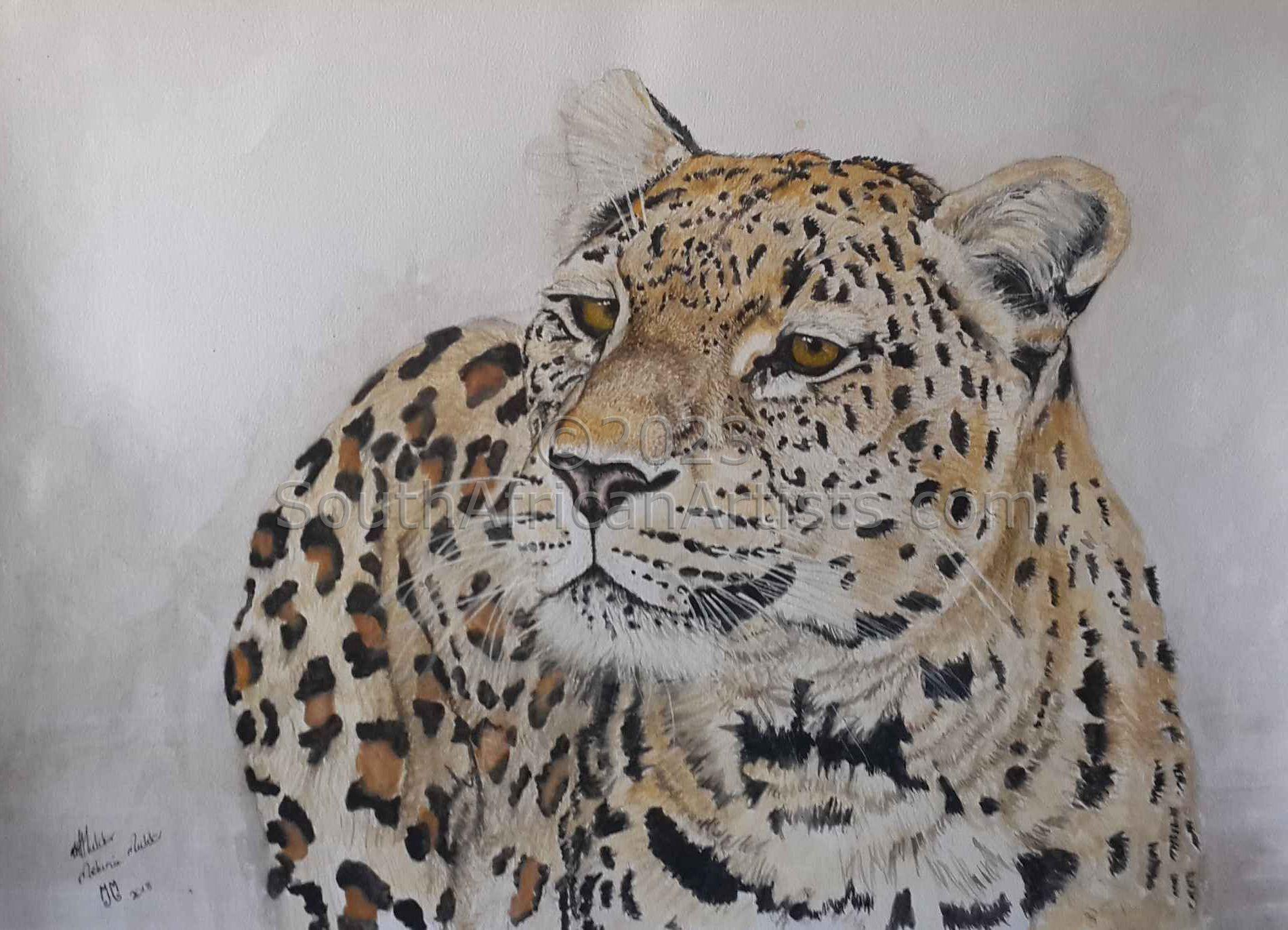 Leopard: Sad Sack