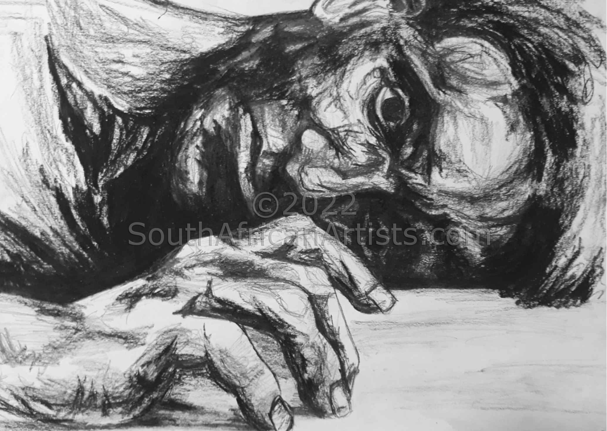 Charcoal Exspresion 3 (Lost in Thoughts)