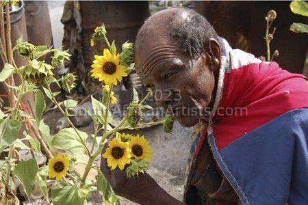 Van Gogh of the Karoo