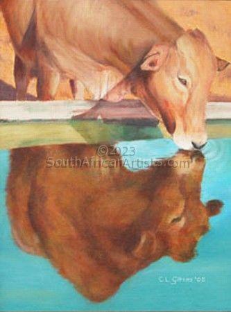 Narcissistic Cow