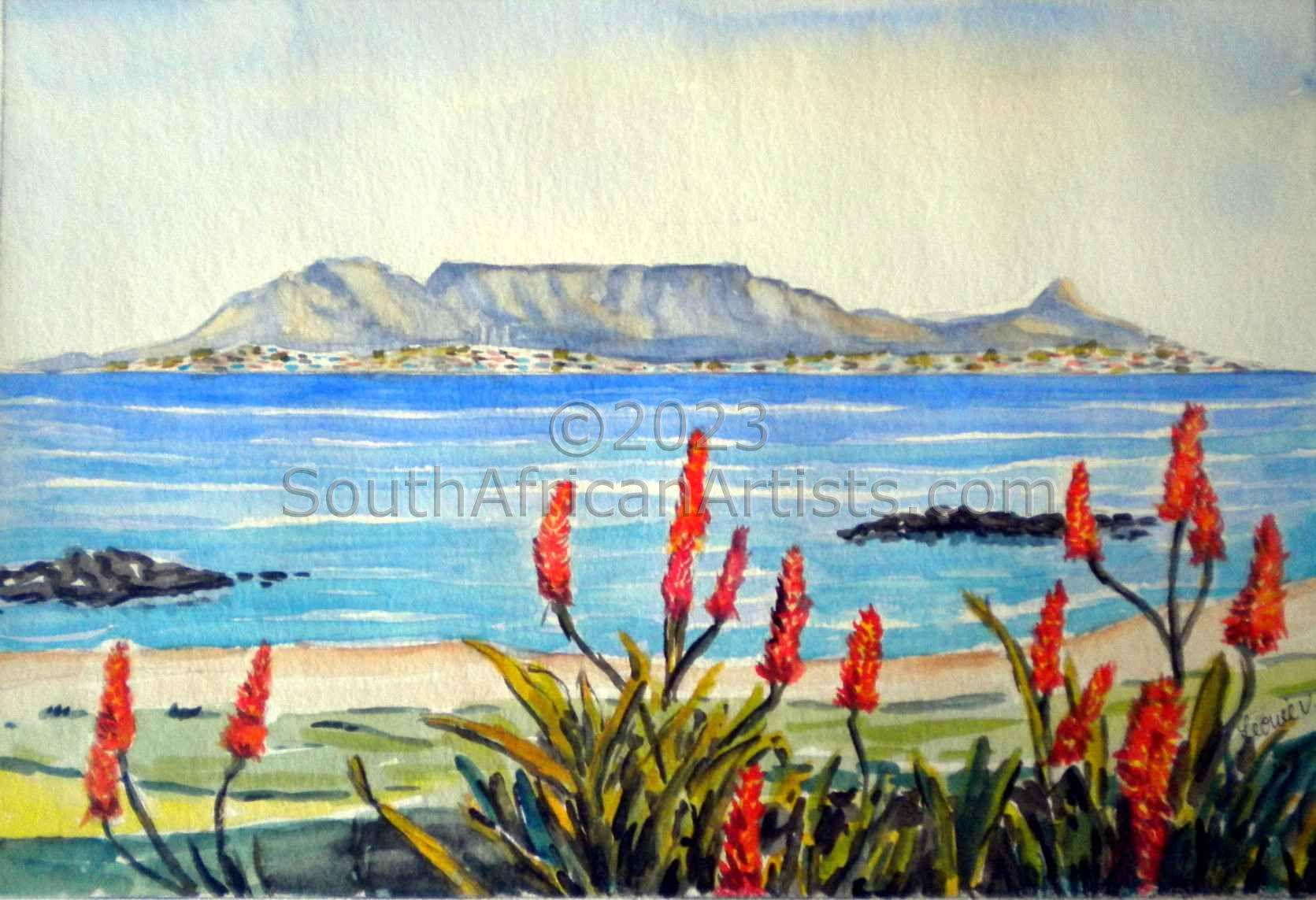 Aloe and Table Mountain
