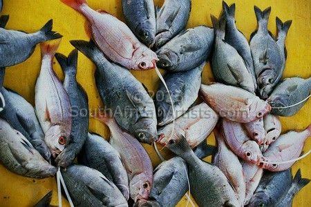 Kalk Bay fish bundle