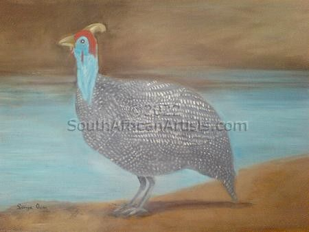 Guinea Fowl At River