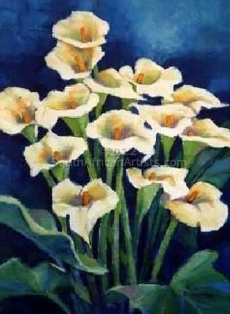 Arym Lily