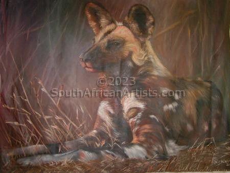 Resting Wild Dog