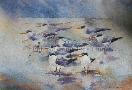 Terns on the Lagoon