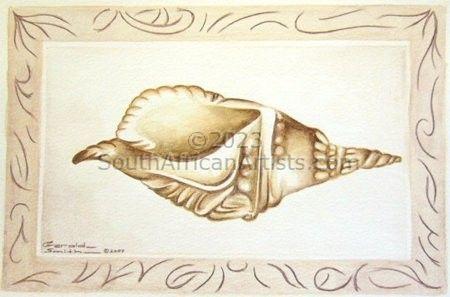 Sea Shell (Hidden Beauty)