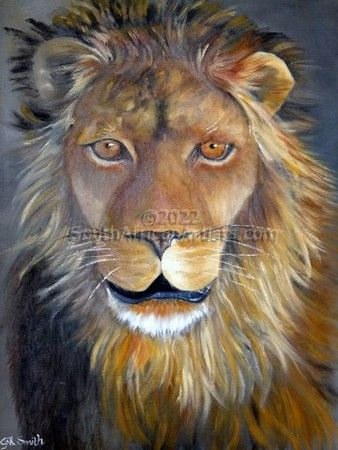 Lion - The King