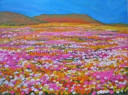 Namaqualand landscape 2