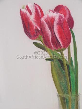 Tulips - STOLEN