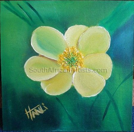 Wild flower 6-Clarens - Goldengate