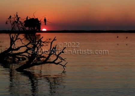 Chobe River Sunset No.4 of 31
