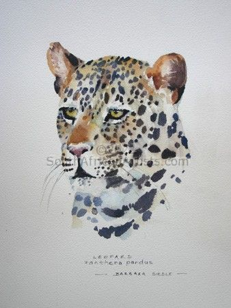 Leopard Illustration 004