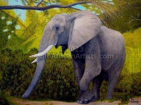 Elephant Shady Stroll