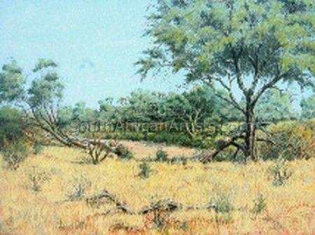 Kruger Park Biyamiti Area