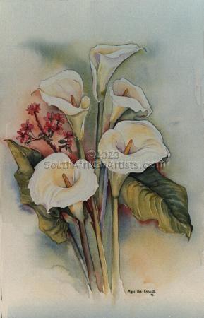 Arum Lilies III