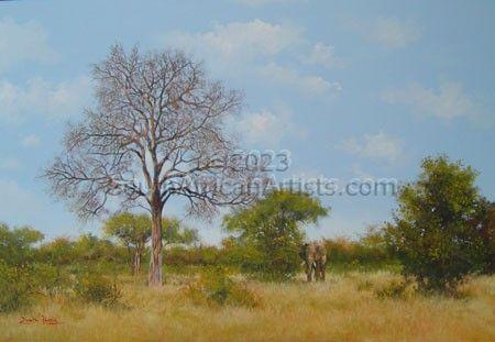 Bushveld 1