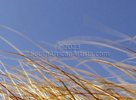 Grass Series 8