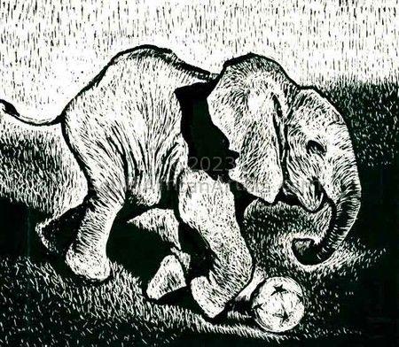 2010 elephant!