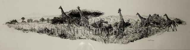 Giraffe Montage