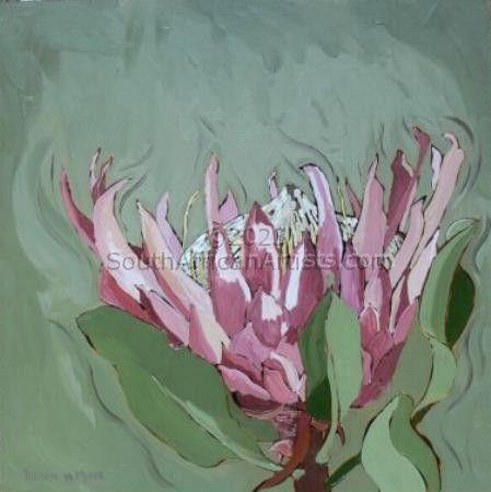 Fynbos 71, Giant Protea