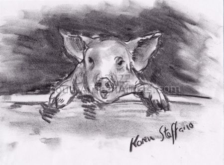 Pig on a fence