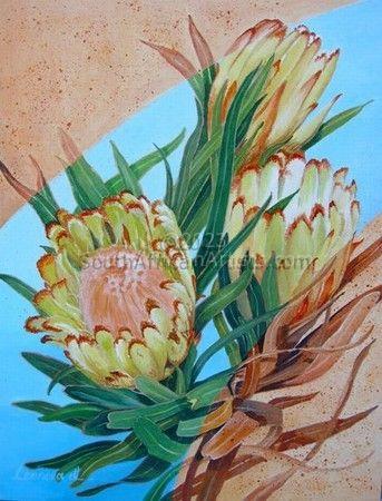 Yellow Proteas
