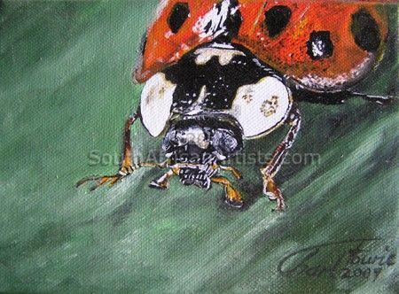 Bugs-Ladybird 2