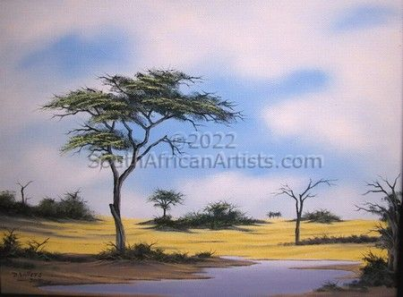 Landscape - Makgadikgadi