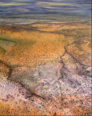 Serengeti Aerial