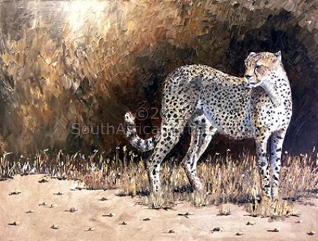 Last Cheetah Standing