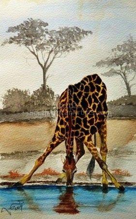 Giraffe @ Waterhole