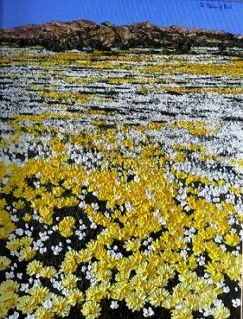 Afternoon in Namaqualand