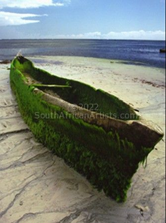 Boat with Moss