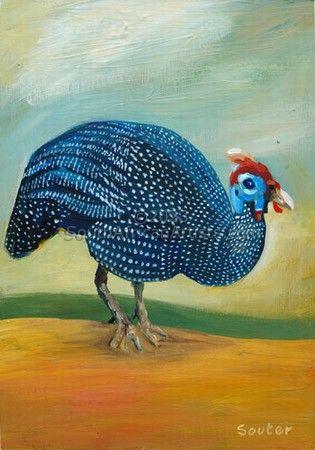 Helmeted Guinea Fowl 6