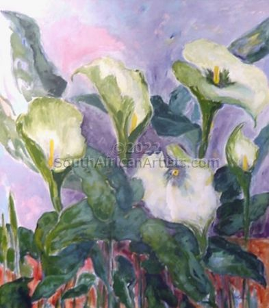Arum Lilies One