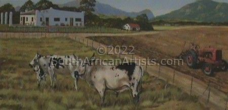 On The Farm - Cattle