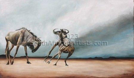 Wildebeest Sparring