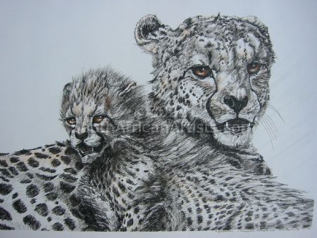 Protection – Cheetah Mother and Cub