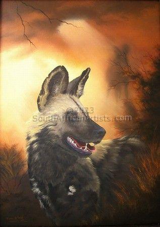 Wild Dog: Study