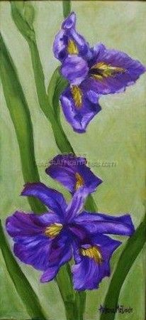 Country Irises