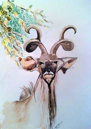 Kudu I